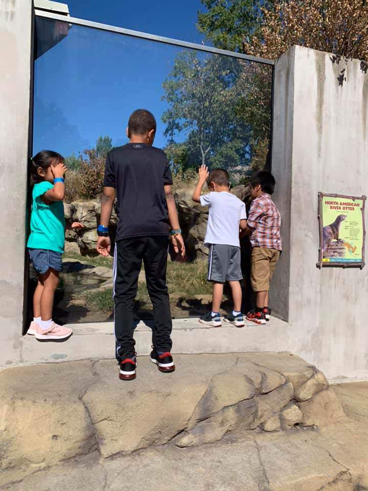 Unaccompanied migrant children gaze at an exhibit at the zoo.